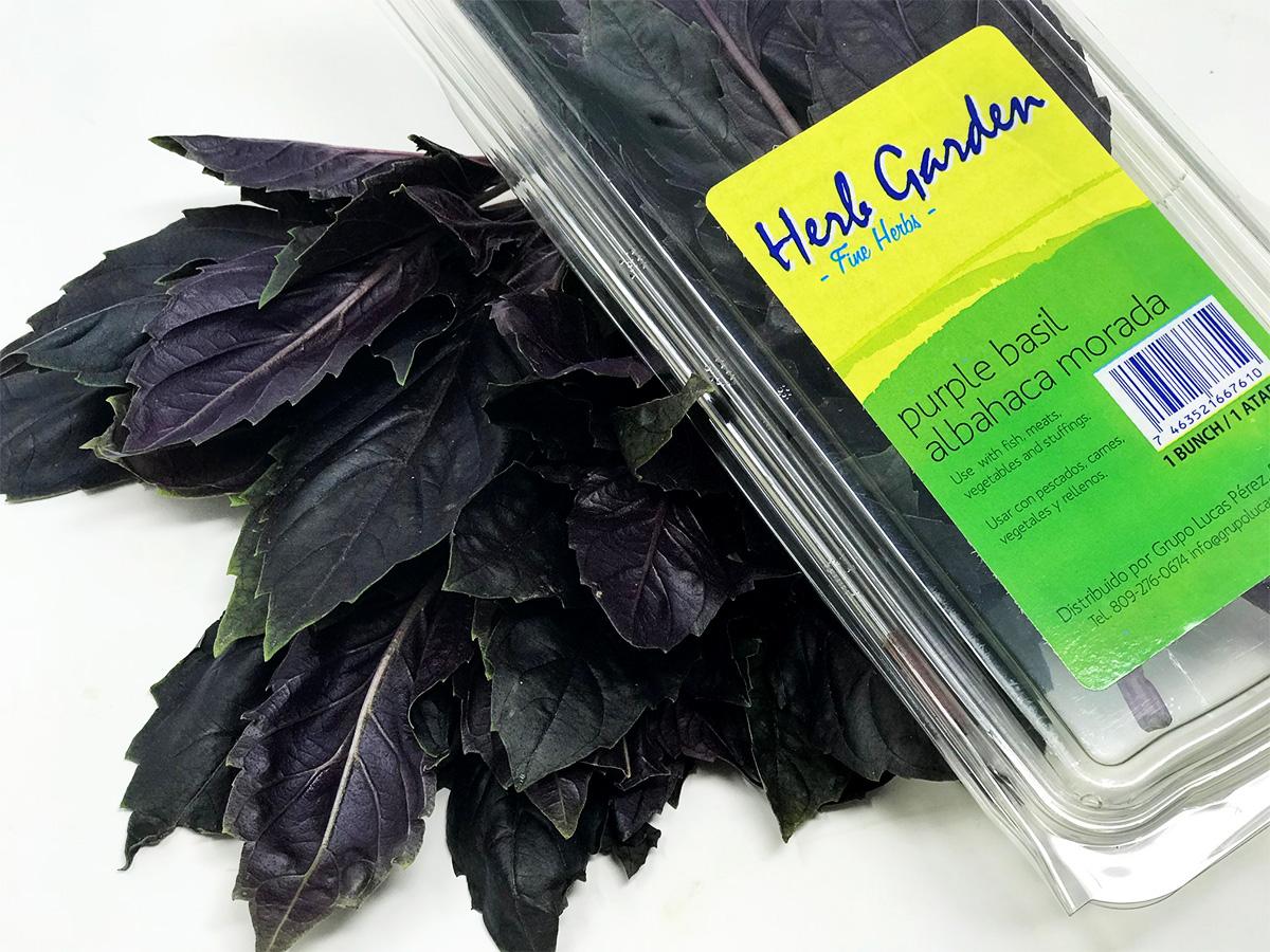hierbas-albahaca-morada