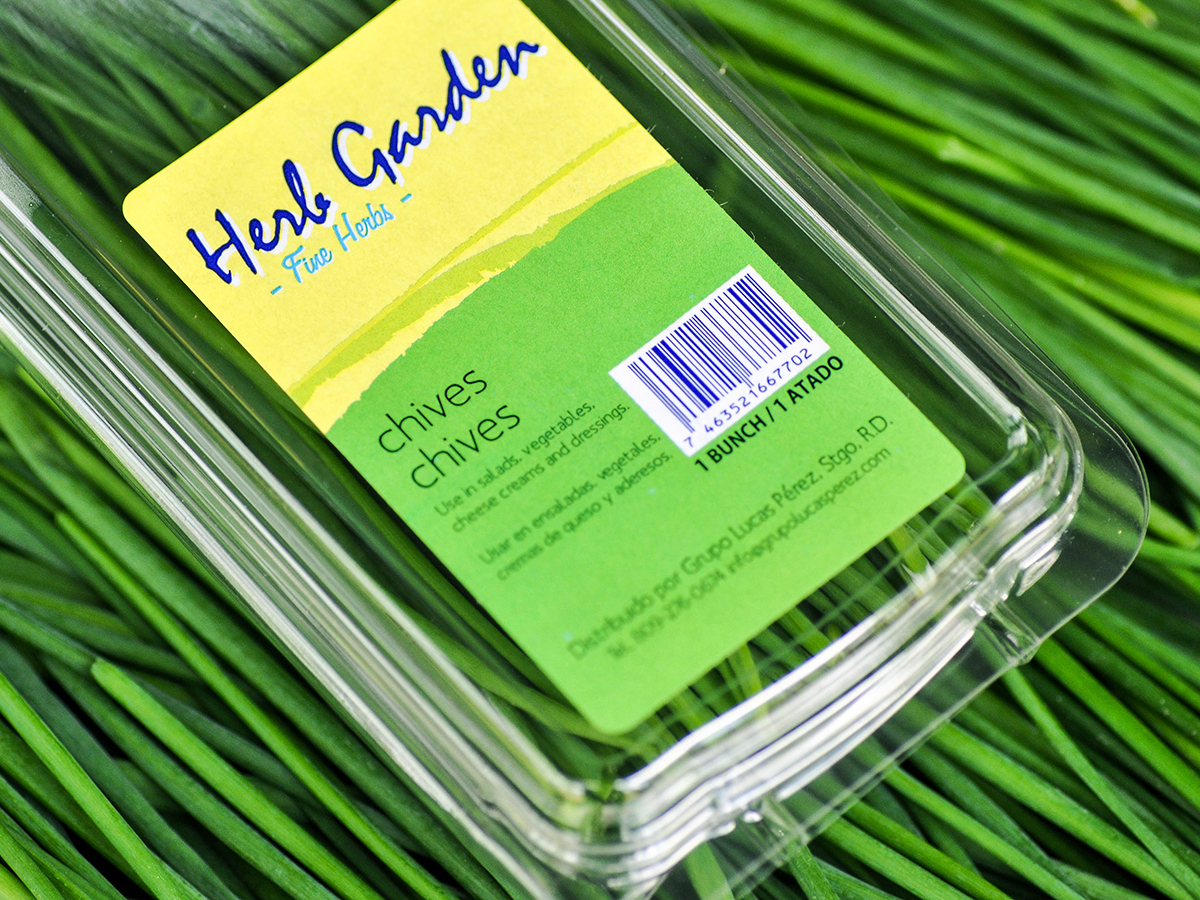 img-chives